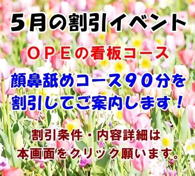 006ELLY18412_TP_V.jpg