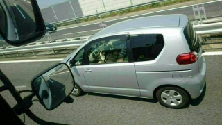 高速道路運転中に大胆な格好でフェラチオしてる素人カップルwwwwwwwwwwwwwww