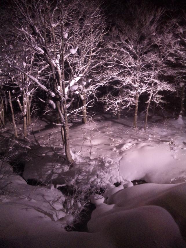 34 大雪だった11年前の正月 第1回 05表