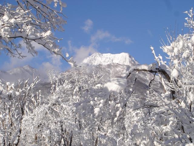 43 大雪だった11年前の正月 第2回 01表