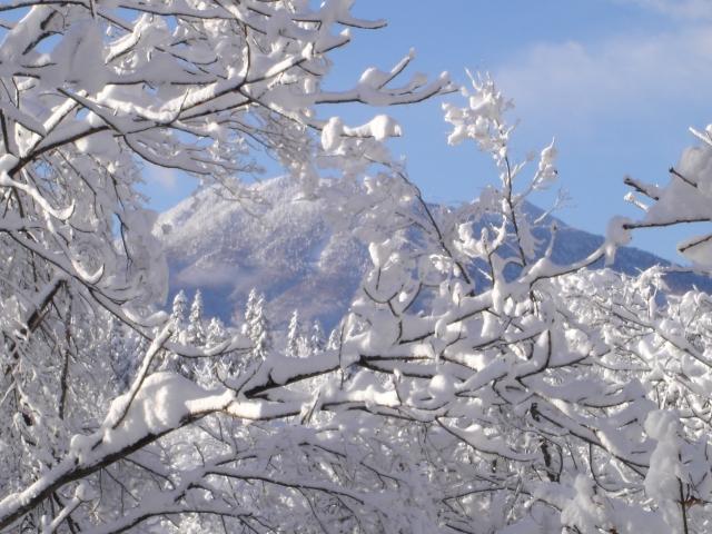 43 大雪だった11年前の正月 第2回 02表