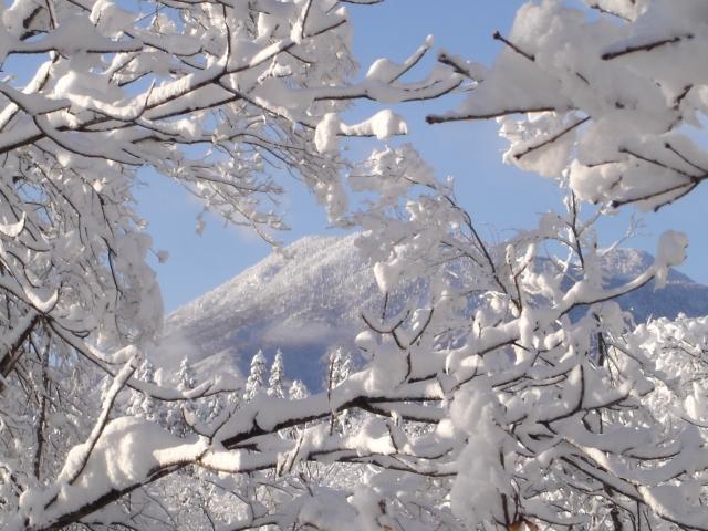 43 大雪だった11年前の正月 第2回 03表