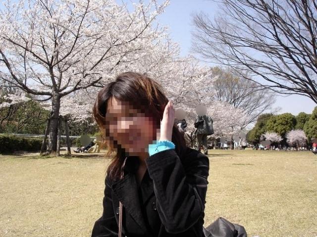 43 首都東京の桜 01表