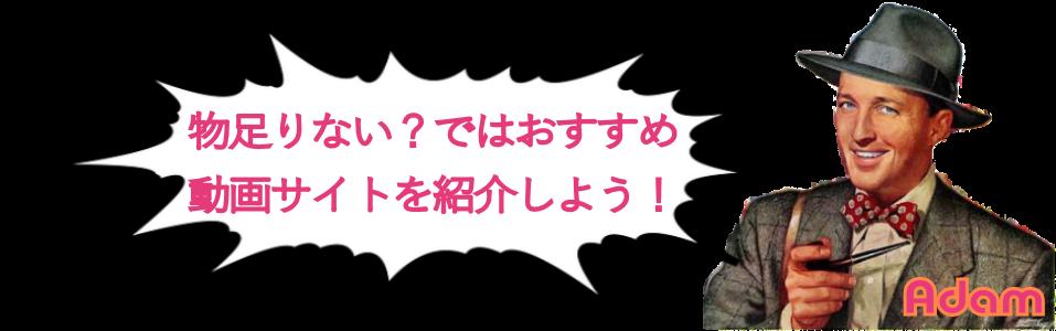 記事下DTIアフィリエイト(動画サイト)