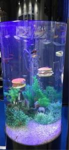 水槽ハンバーガー