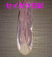 ゴム内射精_006