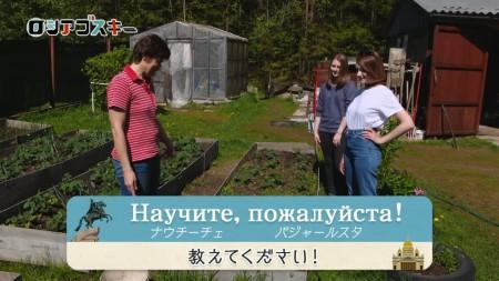 ロシアゴスキーの画像010
