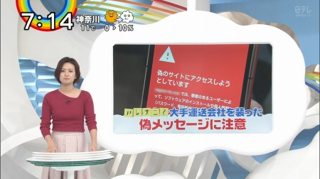 徳島えりかアナの画像037