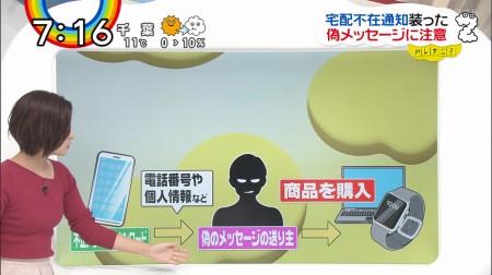 徳島えりかアナの画像038