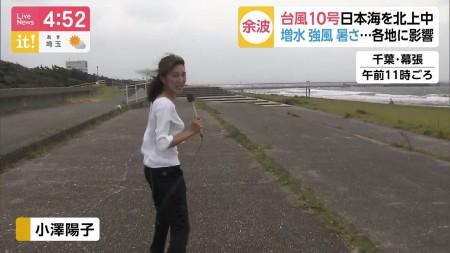 小澤陽子アナの画像050