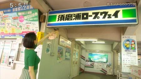 橋本マナミの画像009