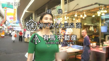 橋本マナミの画像039