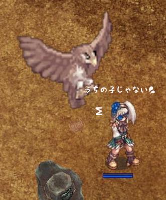 鷹の成長3