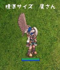 鷹の成長1